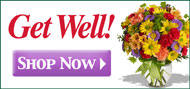 Get Well Flowers - Shop Now