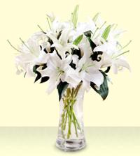 10-Stem White Oriental Lilies by Suinshine Florist