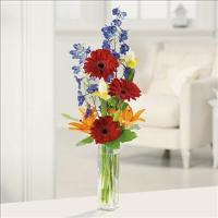 Gerbera Greetings by Suinshine Florist