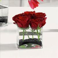 Roses in Glass Cube by Suinshine Florist
