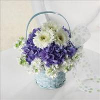 Baby Blue Basket by Suinshine Florist