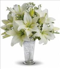 Written in the Stars by Teleflora by Suinshine Florist
