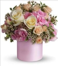 Blushing Beauty by Suinshine Florist