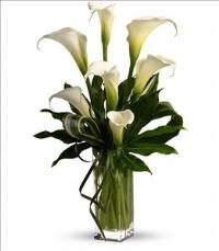 My Fair Lady by Teleflora by Suinshine Florist