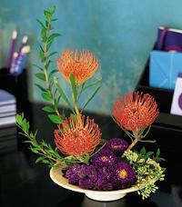 Pin Cushion Protea Bowl by Suinshine Florist