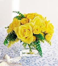 Yellow Roses in a Cube by Suinshine Florist