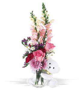 Bear Hug With Pink Roses by Suinshine Florist