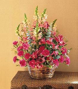 Basket with Mixed Pinks by Suinshine Florist