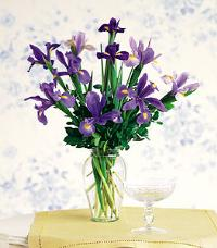 Iris Bouquet in a Vase by Suinshine Florist