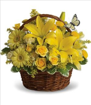 Basket Full of Wishes by Suinshine Florist