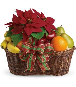 Fruit and Poinsettia Basket by Suinshine Florist